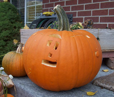 tucks-pumpkin.jpg