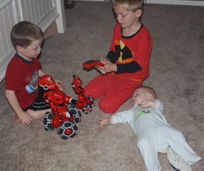 brothersrobots